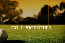 search golf properties in Michigan