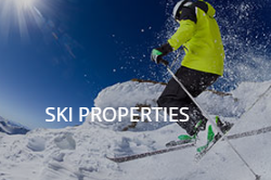 search ski properties for sale in Michigan